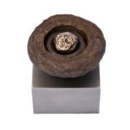 Tres+Bronze